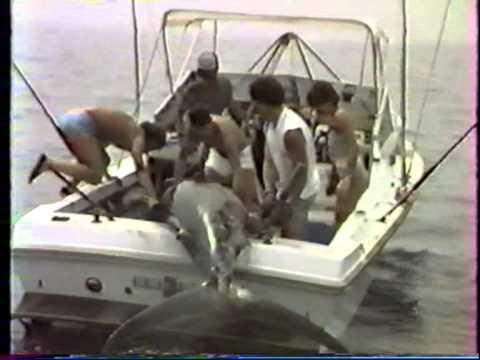 Marlin bleu 434kg - Joss Martin - Abidjan (1985)