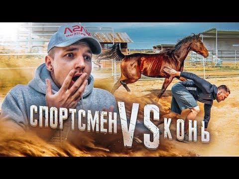 Кто быстрее? Выбери правильную лошадь, что бы выжить! Человек Против Зверя!