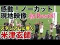 【感動】米津玄師 馬と鹿が熱戦後に!  日本対スコットランド ラグビーワールドカップ2019 Rugby worldcup 2019 Japan vs Scotland  uma to shika