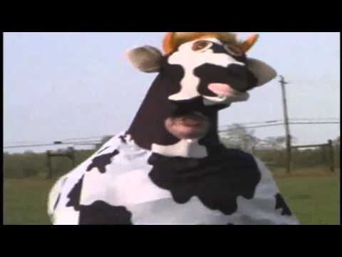 Jokes   MAD COW DISEASE