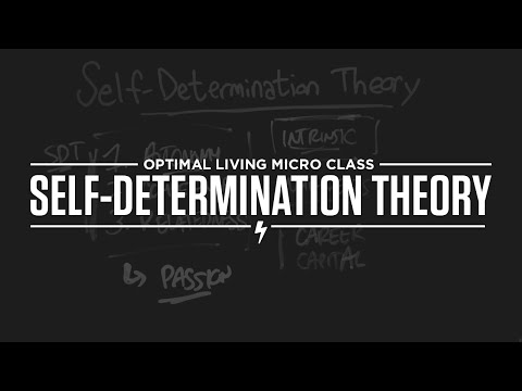 Micro Class: Self-Determination Theory