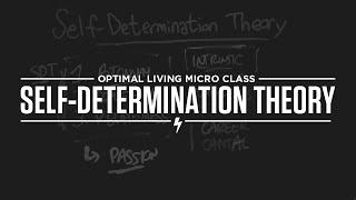 Micro Class: Self-Determination Theory