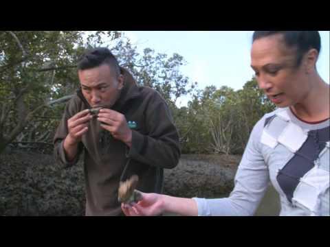 Queens Of Panguru | Episode 3 | Te Reo Māori Version