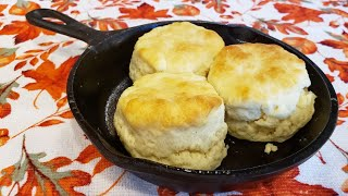 2 Ingredient Biscuits - The Hillbilly Kitchen