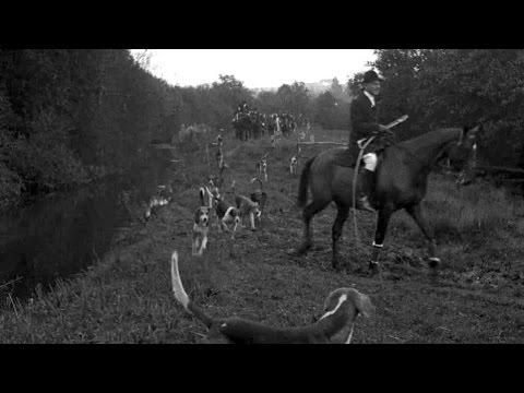 200 Packs of Fox Hounds Begin Season's Sport (1921)