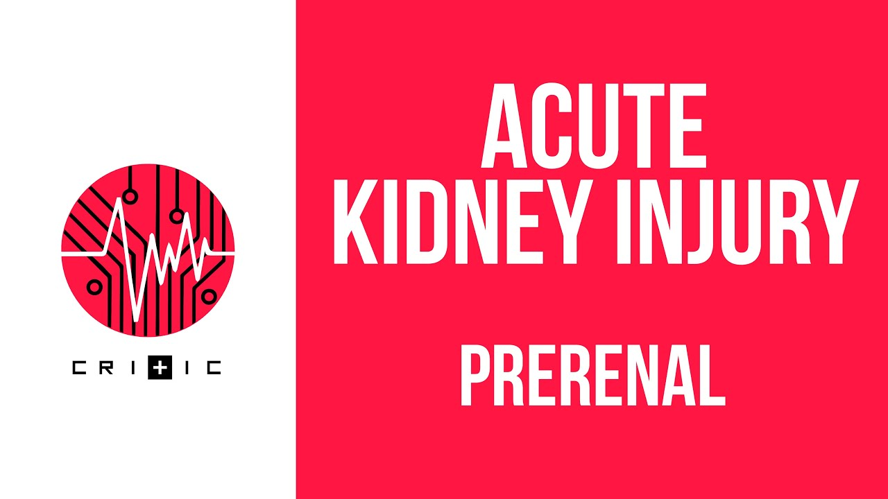 Prerenal Causes Of Kidney Failure The Acute Kidney Injury Series Youtube