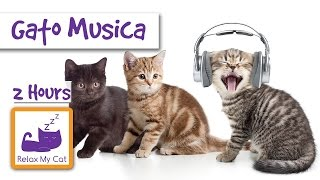 2 HORA GATO MÚSICA -  2 HOURS OF CAT MUSIC