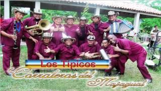 LOS TIPICOS CORRALEROS DE MAJAGUAL | NO ME QUIERAS NA | CONTACTO 3175857231 COLOMBIA