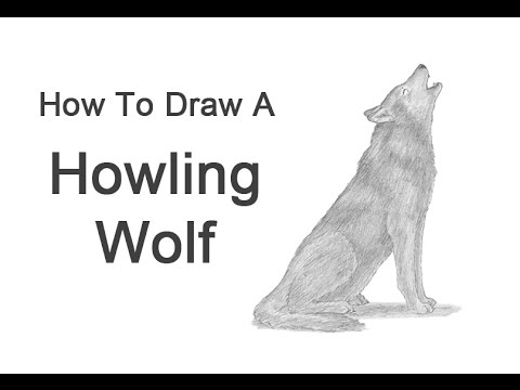 how to draw a wolf video