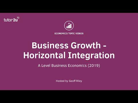 Advantages and Drawbacks of Horizontal Integration