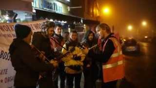 Sheffield IWW picket at the Greedy Greek - 15th November 2014