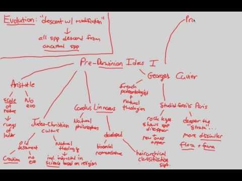Darwinian Evolution - Pre-Darwin I