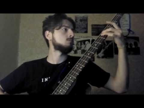 INSOMNIUM - Weather The Storm (Bass Guitar Cover)