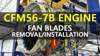 Cfm56-7b Fan Blades Removal/installation