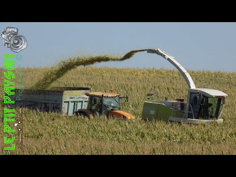 BEST-OF 2017 by Le p'tit paysan | Tractors in Action | CaseIH | Claas | New Holland | MF