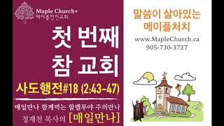 매일만나#18 첫 번째 참 교회 (사도행전 2:43-47) | 정재천 담임목사 | 말씀이 살아있는 Maple Church