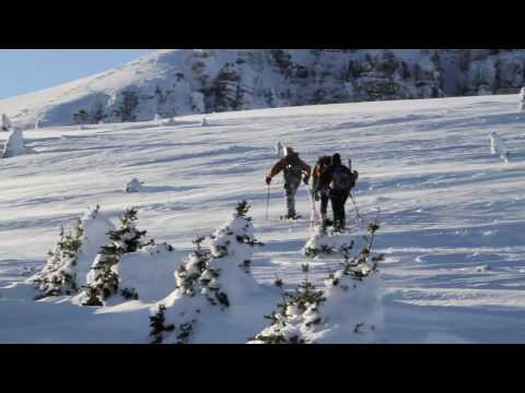 Survey Peak, Banff NP, Canada