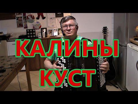 КАЛИНЫ КУСТ с текстом-(COVER)-ЗАМЕЧАТЕЛЬНАЯ ПЕСНЯ