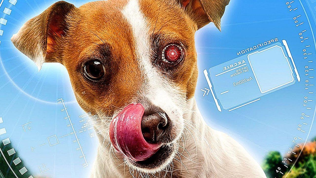Download ROBODOG 2 - Film Complet en Français (Comédie)