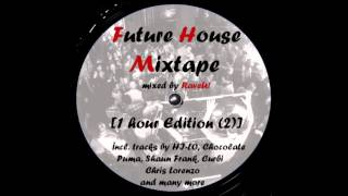 Future House Mixtape [1 hour Edition] *free download* incl. tracks by HI-LO, Chocolate Puma...
