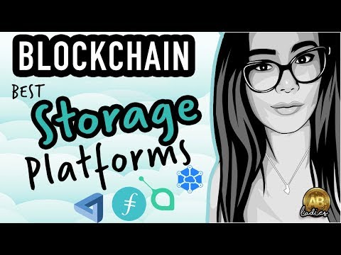 Decentralised Storage Solutions on the Blockchain