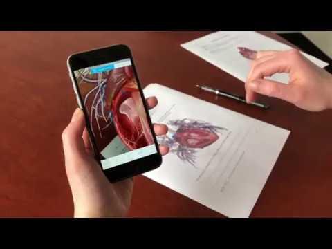 Teach Anatomy in Augmented Reality | Human Anatomy Atlas 2018