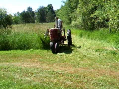 Farmall 300 Mowing With Brush Hog Youtube