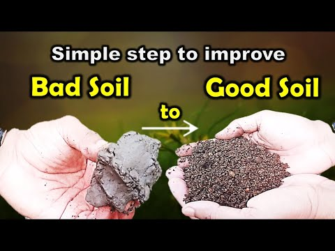 Improving clay soil into best potting mix and potting soil for gardening