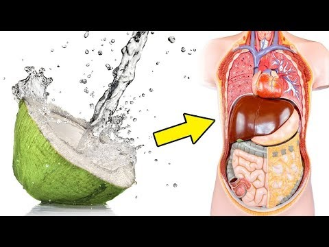 See What Happens To Your Body When You Drink Coconut Water Everyday