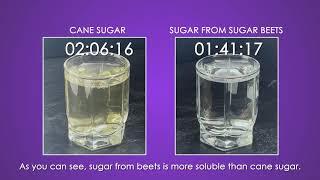 Сane sugar vs beet sugar