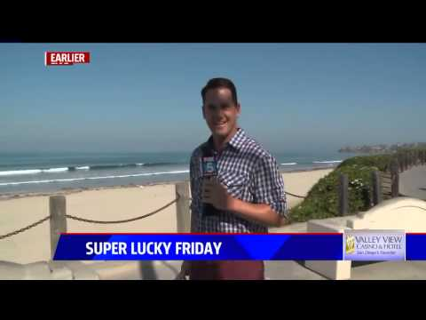 Big bug gives FOX 5 reporter a big scare: 'Are we live?!!'