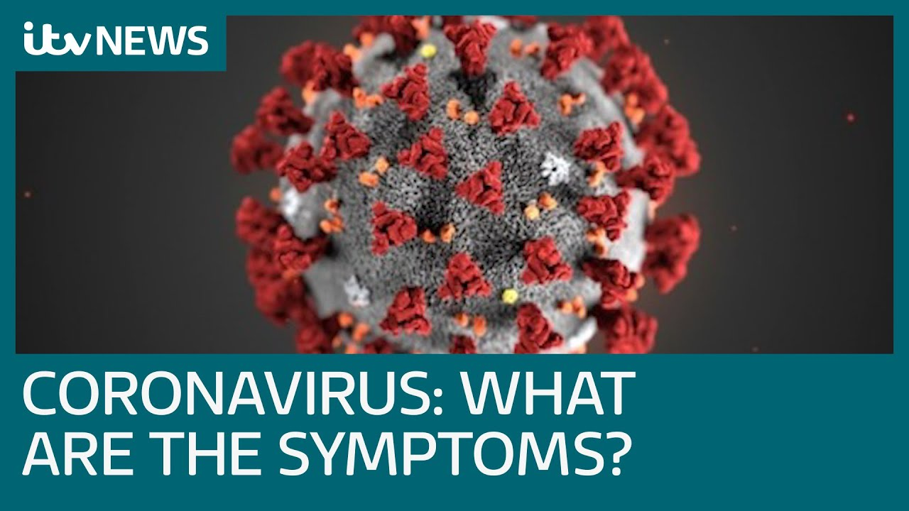 What is the strain of coronavirus known as Covid-19 and what are ...