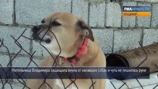 Что делать, если напала собака. Советы кинолога(Сводки новостей пестрят сообщениями о нападении собак на людей. Только в марте животные набросились на..., 2013-03-29T06:36:03.000Z)