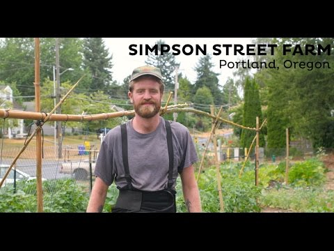 Simpson Street & Sun Blossom Urban Farms
