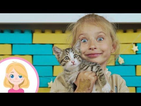Бездомный котёнок нашёл новый дом Маленькая Вера и её добрые дела Поиграйка для детей