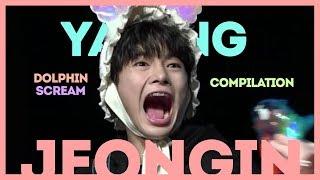 Yang Jeongin-Dolphin Scream Compilation