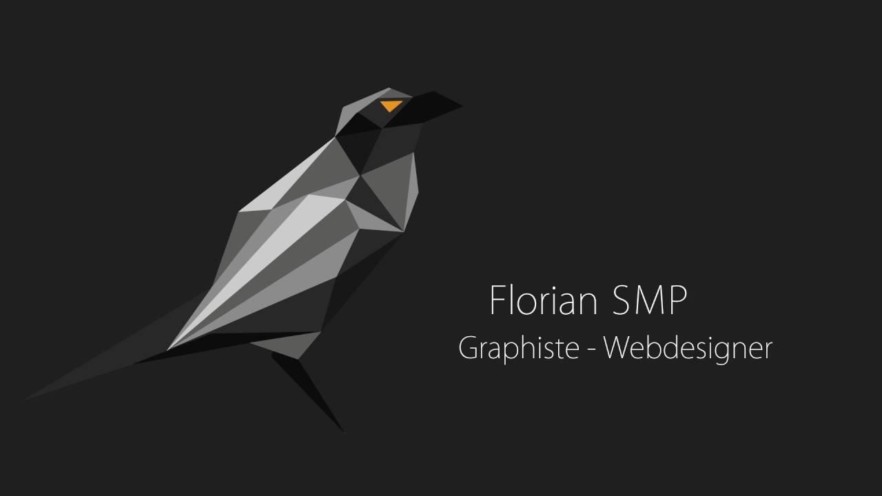 cv motion design florian smp
