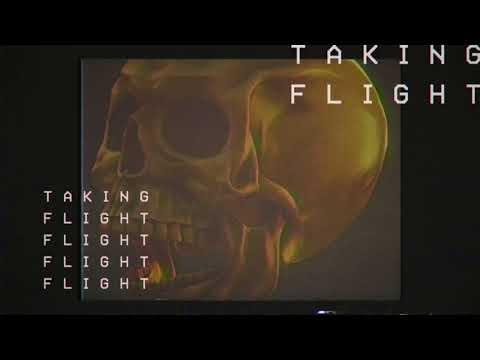 DROELOE - Taking Flight (Official Audio)