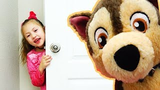 Funny toy guests | Michelle plays with 2 dogs