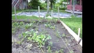 Small Raised Garden Planter|elevated Raised Garden Beds|gardening Boxes|best Above Ground Garden