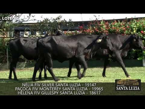 SANTA LUZIA   LOTE 80