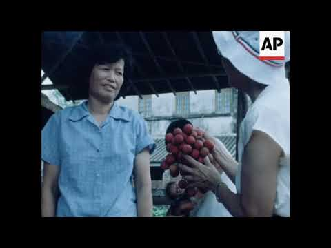 SYND 6 8 81 CHINESE PEASANTS GIVEN PRIVATE FARMING PLOTS TO GROW AND SELL THEIR OWN PRODUCE