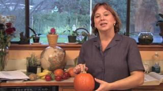 Gardening: Edible Plants : How to Grow Pumpkins