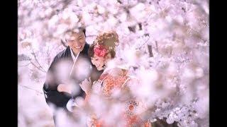 Современная свадебная фотография стала квинтэссенцией всех фотографических стилей и направлений