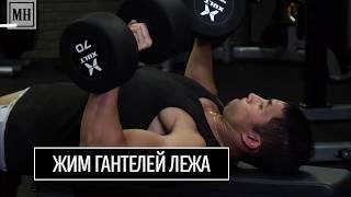 Руки, плечи, спина, грудь: 6 простых упражнений для начинающих