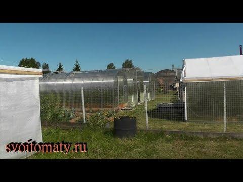 Обзор нашего огорода (Ивановская обл. – средняя полоса России)
