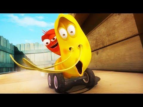 LARVA - GRABD PRIX | Cartoon Movie | Cartoons For Children | Larva Cartoon | LARVA Official