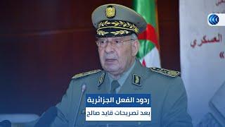 شاهد.. ردود الفعل الجزائرية بعد تصريحات قايد صالح بشأن الانتخابات