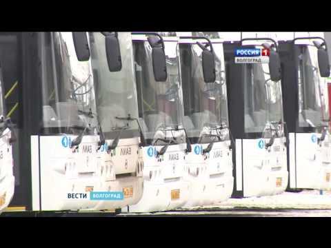 В Волгограде готовятся к запуску новые автобусные линии