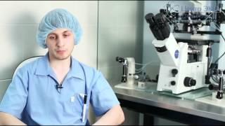 Где и как делают экстракорпоральное оплодотворение?(Специалисты клиники